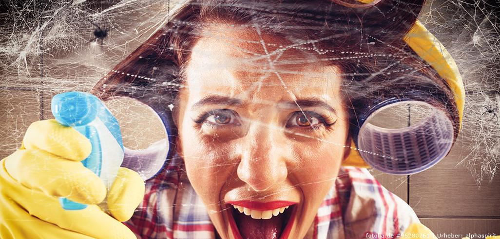 Spinnweben und Staub entfernen